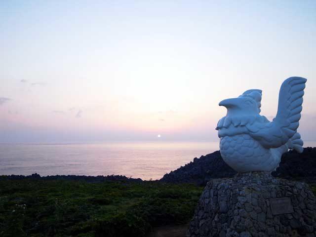 辺戸岬ヤンバルクイナ