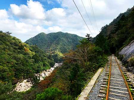 縄文杉トロッコ道